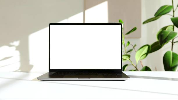 photo of a laptop on a white desk with a green plant The photo of a laptop on a white desk with a green plant laptop stock pictures, royalty-free photos & images