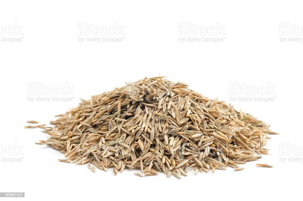 Photo of a neat pile of grass seed before a white background stock photo