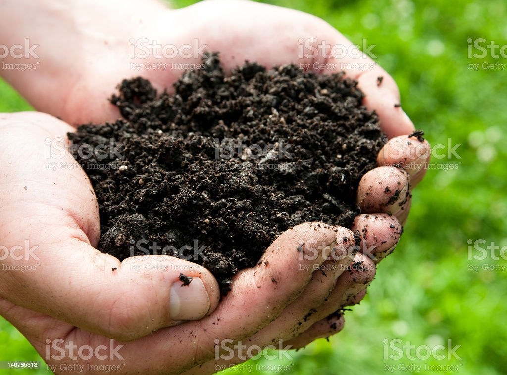A photo of a person holding dirt in their hands stock photo