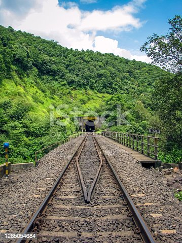Photo of a railway track passing through a tunnel cut through a hill full of green plants.