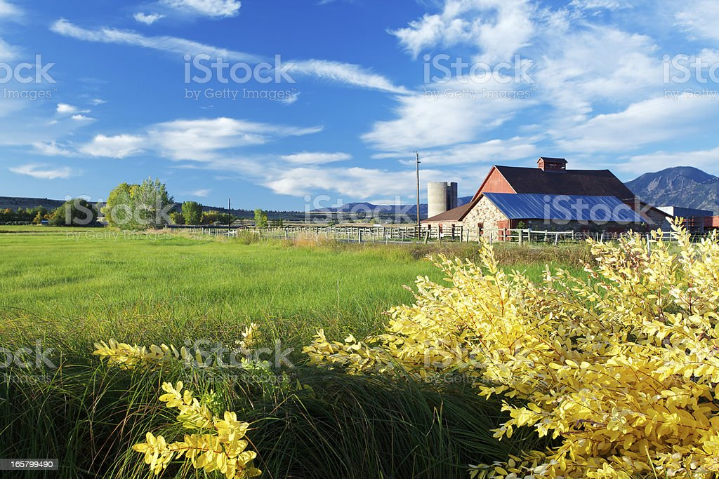 Photo of a red barn in a green field on a sunny day stock photo