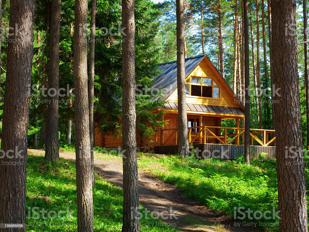 Photo of a rustic house on the woods stock photo