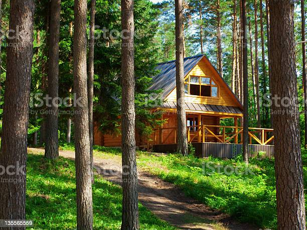 Photo of Photo of a rustic house on the woods