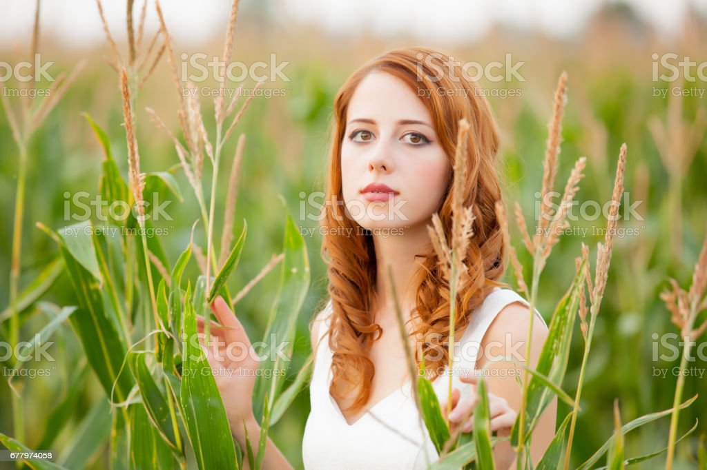 photo of beautiful young woman standing near the growing wheat royalty-free stock photo