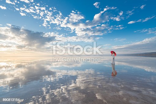 istock Photo of beautiful young woman with umbrella on the wonderful sky background 890813154