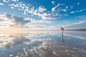 Photo of beautiful young woman with umbrella on the wonderful sky background