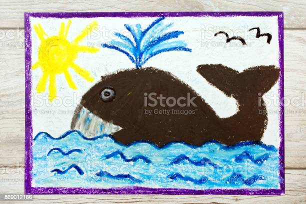 Photo of colorful drawing big whale and water picture id869012166?b=1&k=6&m=869012166&s=612x612&h=gqayfu ju15uk lcgv1p8kwxtzobhdwmnqp0acwc0ya=