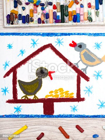 139975532istockphoto Photo of colorful drawing: Bird feeder, winter and two cute birds. Feeder for the birds 899707894