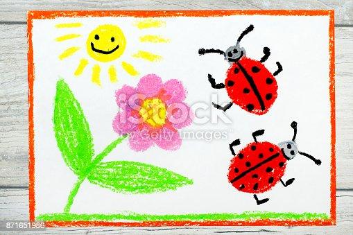 Cute ladybug cartoon Royalty Free Vector Image