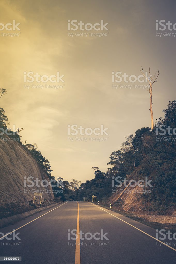 photo of country road in autumn forest stock photo