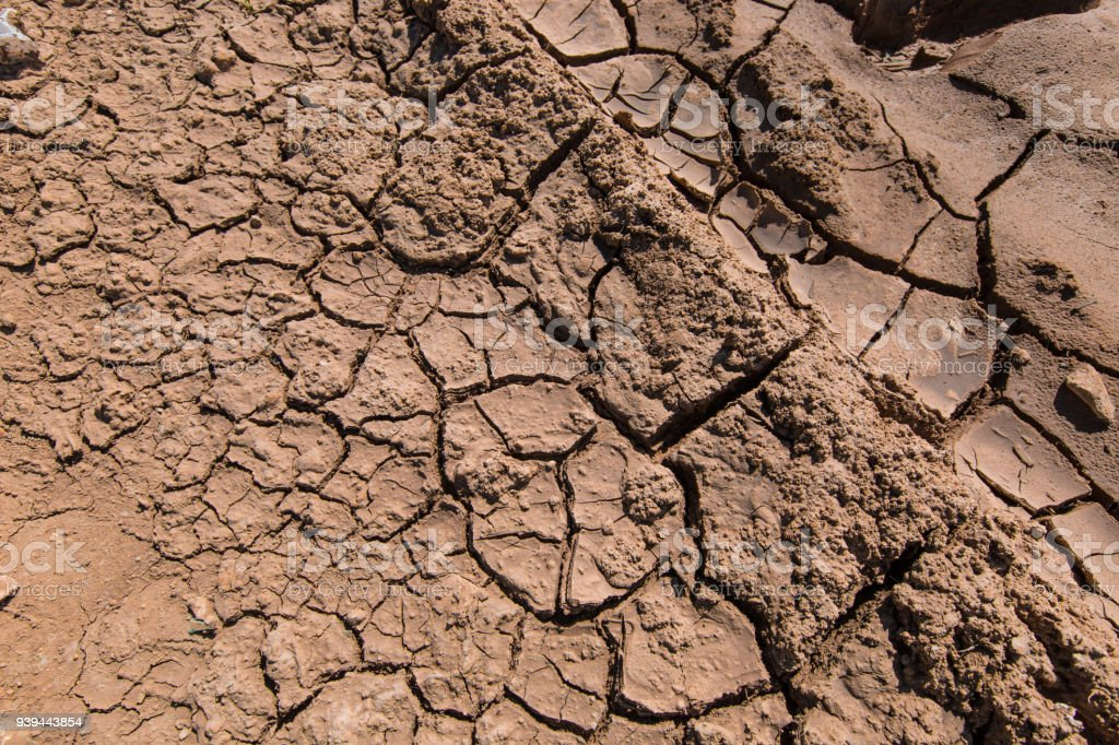 Photo Of Cracked Earth during a drought
