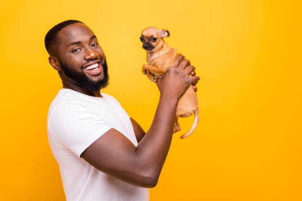 Photo of dark skin guy raising little pet in arms wear casual outfit picture id1167716467?b=1&k=6&m=1167716467&s=612x612&w=0&h=dw9nkrcqprmrxb3kmvtnci3dptgli1k4i2mkicbae3k=
