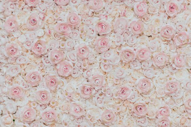 Photo of floral wall picture id1177221159?b=1&k=6&m=1177221159&s=612x612&w=0&h=tcscnfvjtagwxxgi4zniqtvyehxwnqw7btahmvyug94=