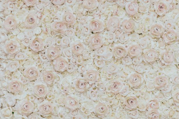 Photo of floral wall picture id1177221165?b=1&k=6&m=1177221165&s=612x612&w=0&h=feqcmljw117bt8p0cstraakc9m5hep3m8 tsi2pmrli=