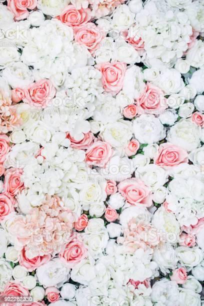 Photo of floral wall picture id922282330?b=1&k=6&m=922282330&s=612x612&h=tlhvkj2oyzbvlhqedaolipziq5nu loverfbvc8ajp4=