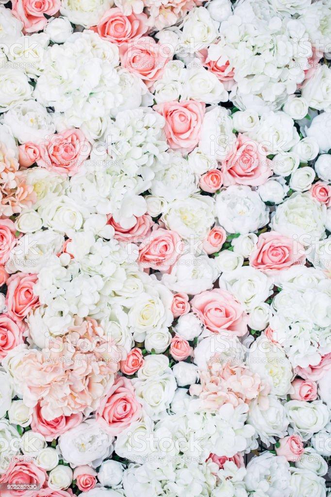 Photo de mur floral - Photo