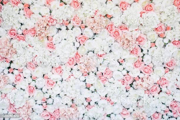 Photo of floral wall picture id922282370?b=1&k=6&m=922282370&s=612x612&h=67ys 2fjty ywkumcmmwvg0dqbgscffgja5tzwx8yvc=