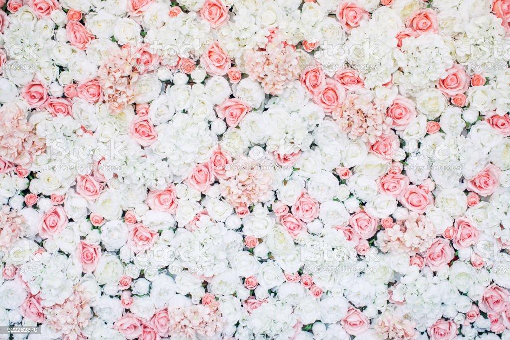 花模様の壁の写真 ストックフォト