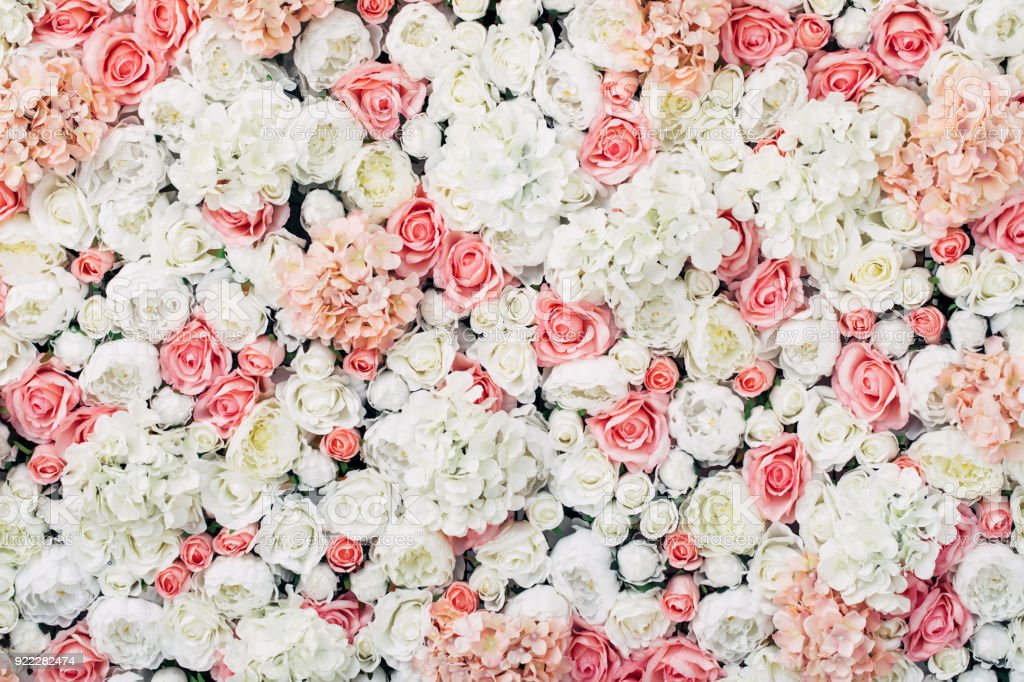 Photo of floral wall royalty-free stock photo
