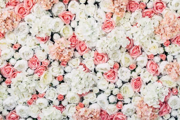 Photo of floral wall picture id922282474?b=1&k=6&m=922282474&s=612x612&w=0&h=5kcpefq8k7cuyidxdl8auxx32bppo1q55acbbaska2e=