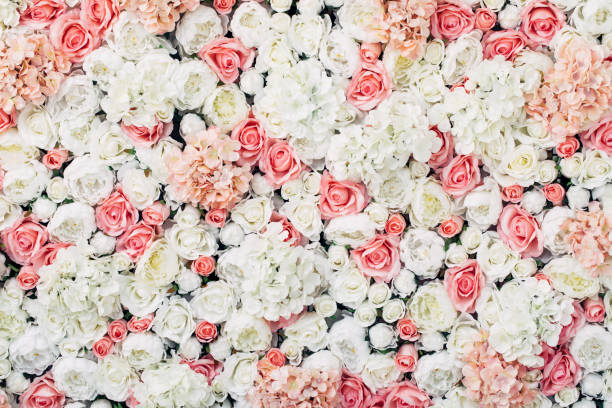 photo of floral wall - wedding stock pictures, royalty-free photos & images