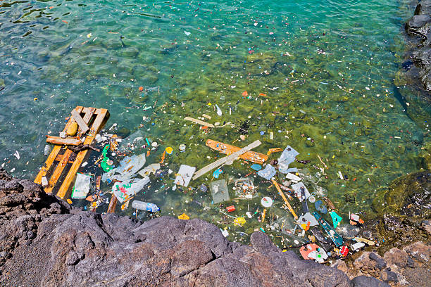 photo of garbage floating in the shoreline water - ocean plastic stock pictures, royalty-free photos & images