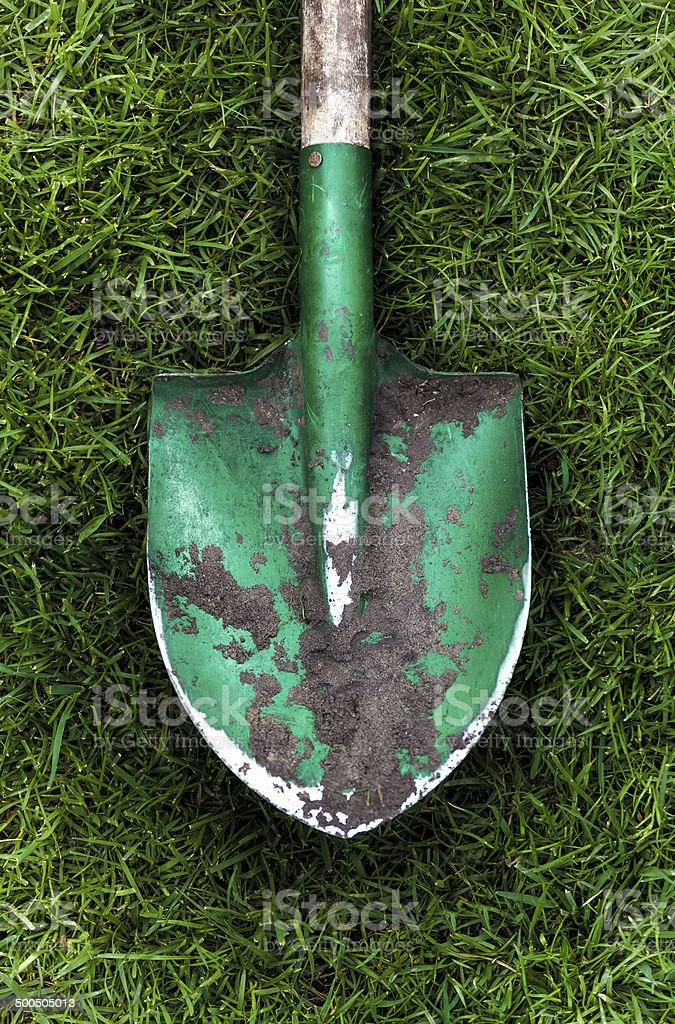 photo of green shovel with soil on grass stock photo