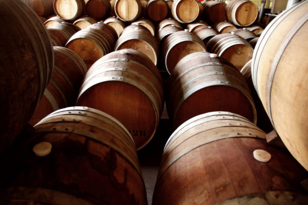 Photo of historical wine cellar and barrels stock photo