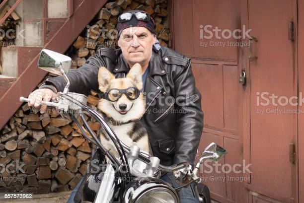 Photo of humor the biker and his dog are sitting on a motorcycle picture id857573962?b=1&k=6&m=857573962&s=612x612&h=szbxoobk83ahrxcekxdqybfitcexa1ia ccv63guoxy=