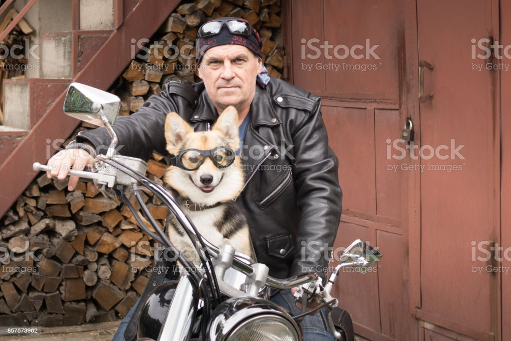 Photo of humor. The biker and his dog are sitting on a motorcycle. стоковое фото