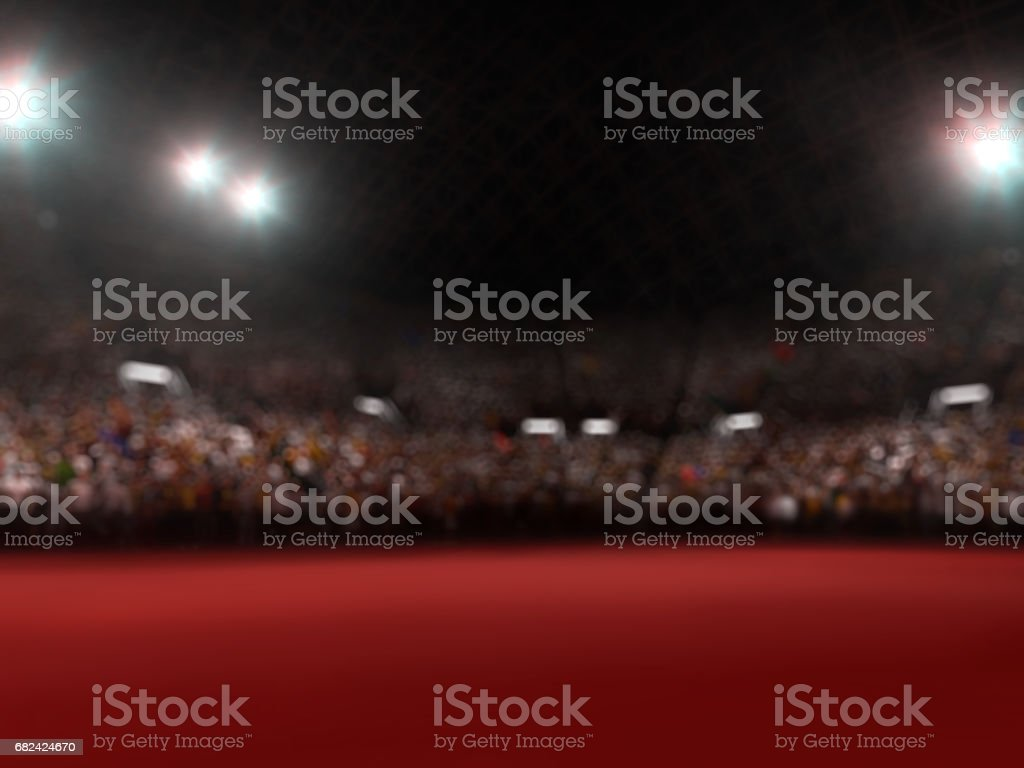 Photo of the stadium with the fans royalty-free stock photo