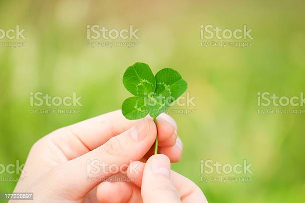 Photo of two hands holding up a green four leaf clover picture id177226897?b=1&k=6&m=177226897&s=612x612&h=zjizmfyec2i9d pqa78naqvb8lecdyh6as39ykwrjmk=