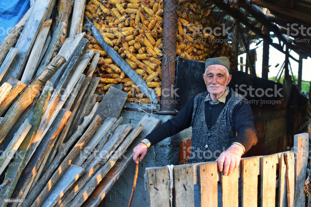 Photo of wrinkled and expressive old farmer outdoor royalty-free stock photo