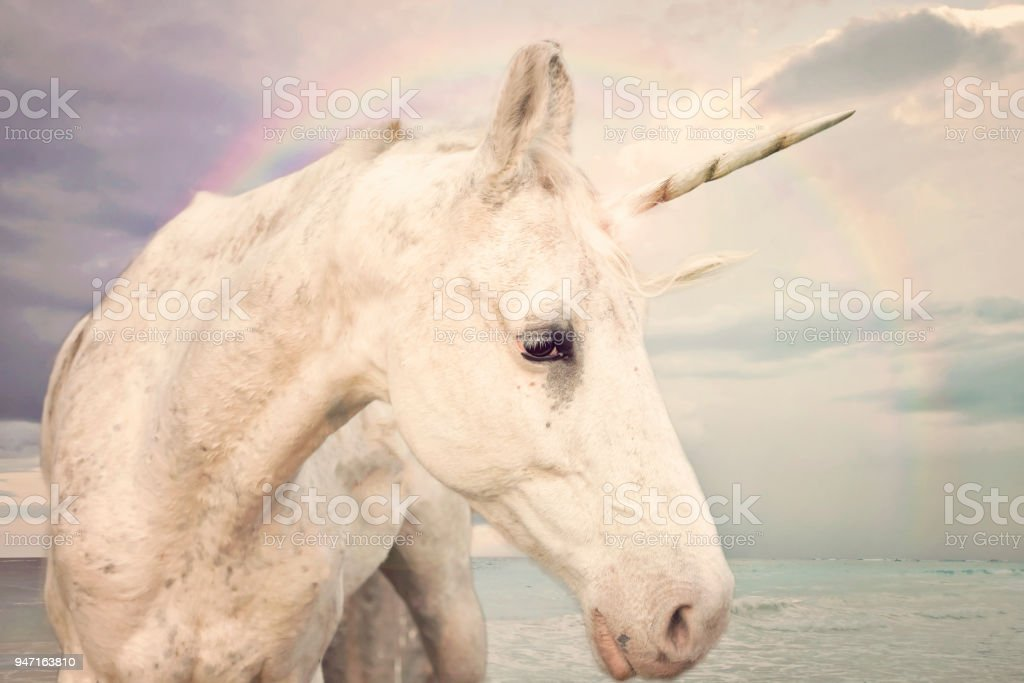 Photo Realistic Unicorn stock photo