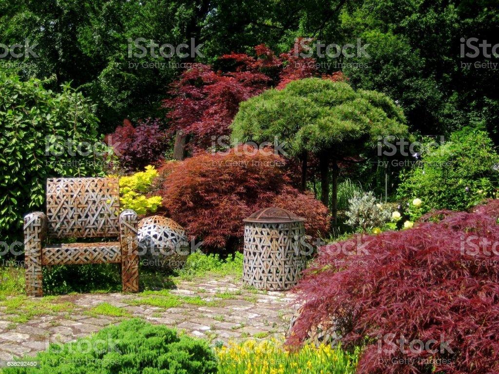 photo summer background ornamental gardening landscape design stock photo