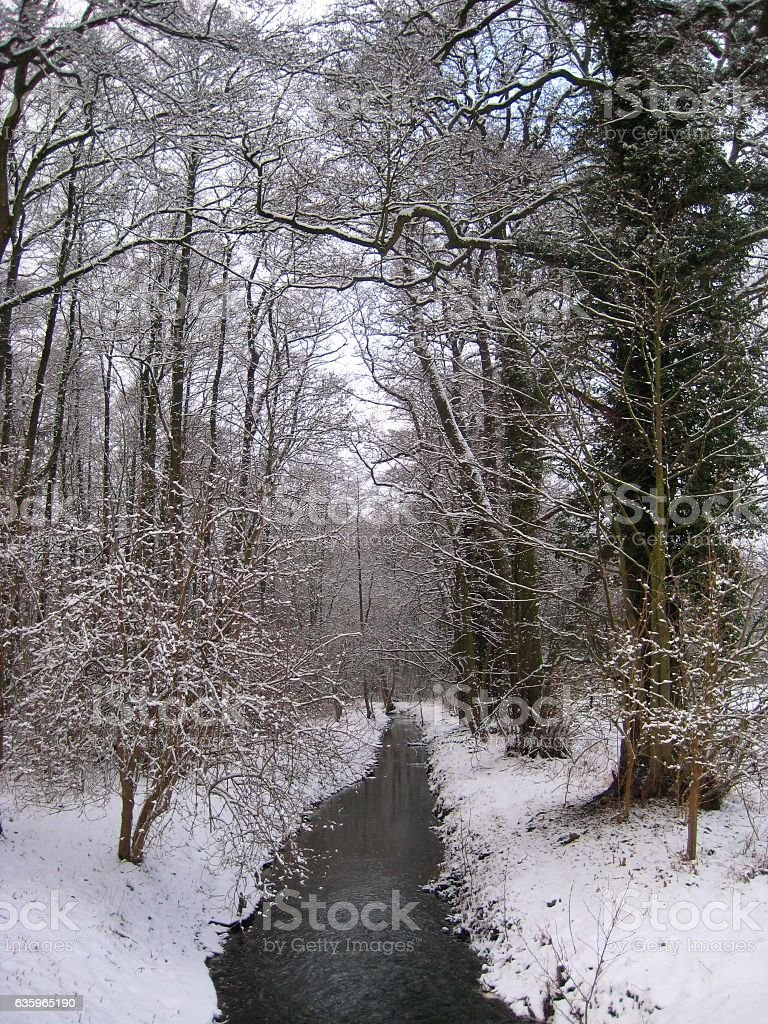 photo with a winter landscape with background of river and forest stock photo