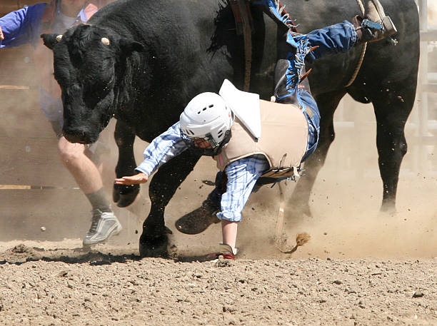 Photograph Cowboy Falling from a Bucking Bull stock photo