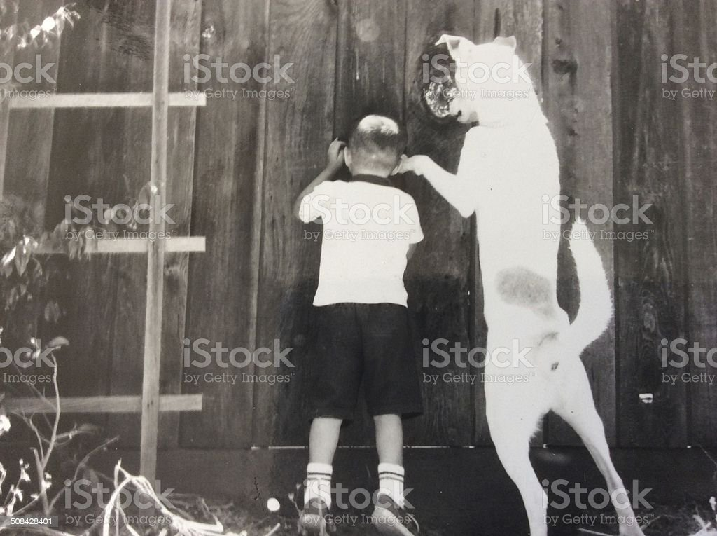 Photograph of a Boy and His Dog Peeking through a Fence stock photo