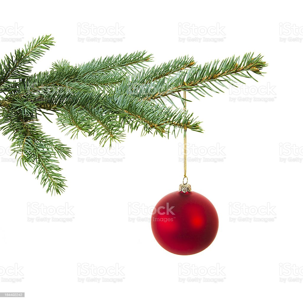 A Photograph Of A Christmas Tree Branch With One Red Ball Stock ...