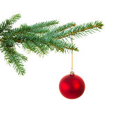 A photograph of a Christmas tree branch with one red ball