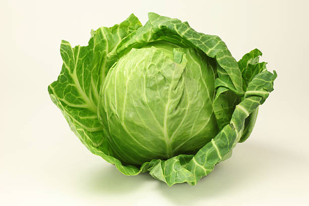 photograph of a healthy green cabbage - cabbage stock photos and pictures
