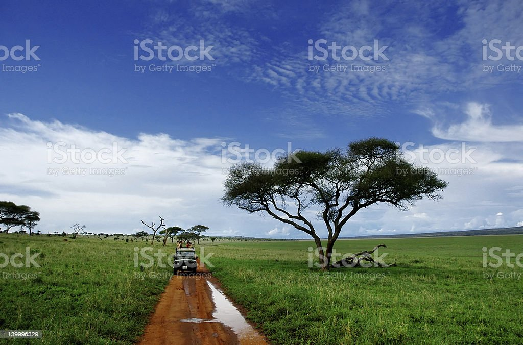 Photograph of safari landscape with dirt road royalty-free stock photo