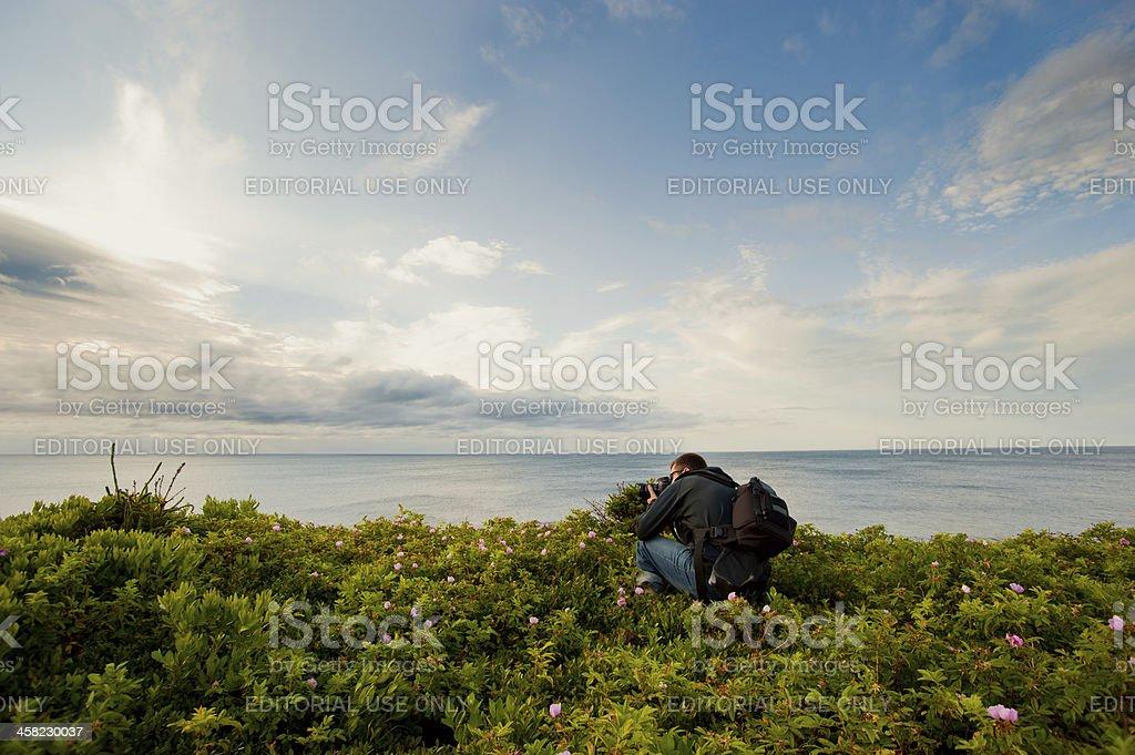 Photographer along coast royalty-free stock photo
