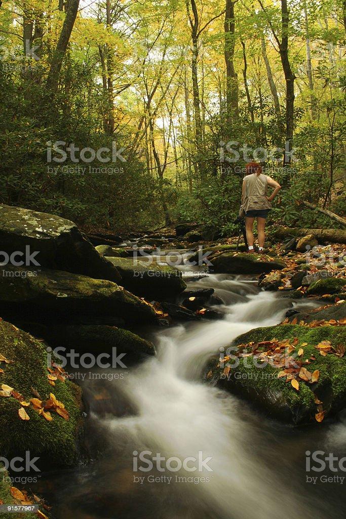 Photographer along the Stream royalty-free stock photo