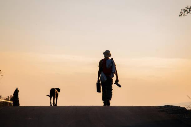 Photographer and his dog walking on sunset stock photo