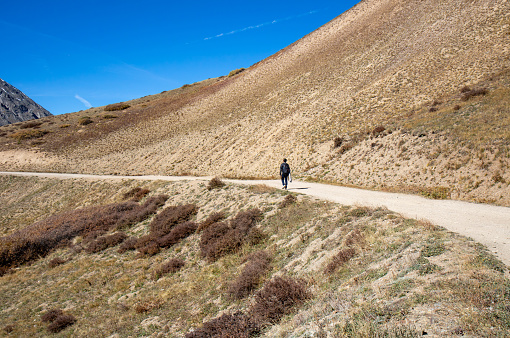 Photographer carrying tripod and hiking on the Hoosier Pass on fall