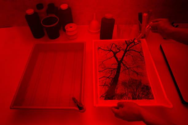 Drucken eines Fotos in der Dunkelkammer Fotograf – Foto