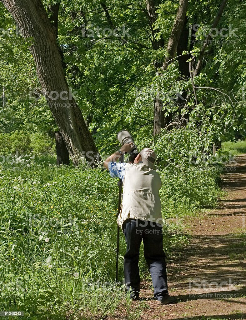 Photographer takes photo standing in park or forest royalty-free stock photo