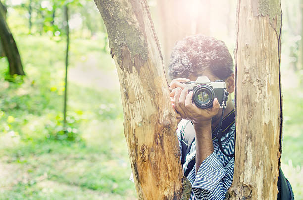 Photographer taking photos framing in between tree trunks stock photo
