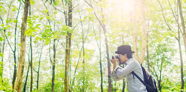 Photographer taking photos in a green forest stock photo